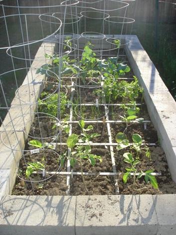 Raised Garden Beds Kris Allen Daily