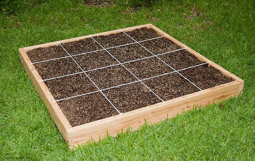 How to start a garden as a part of your house?   Kris ...